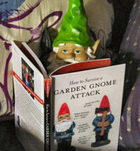 Gnome writing shocking expose.  Photo found on http://dittersdorfgnome.wordpress.com/tag/how-to-survive-a-garden-gnome-attack/